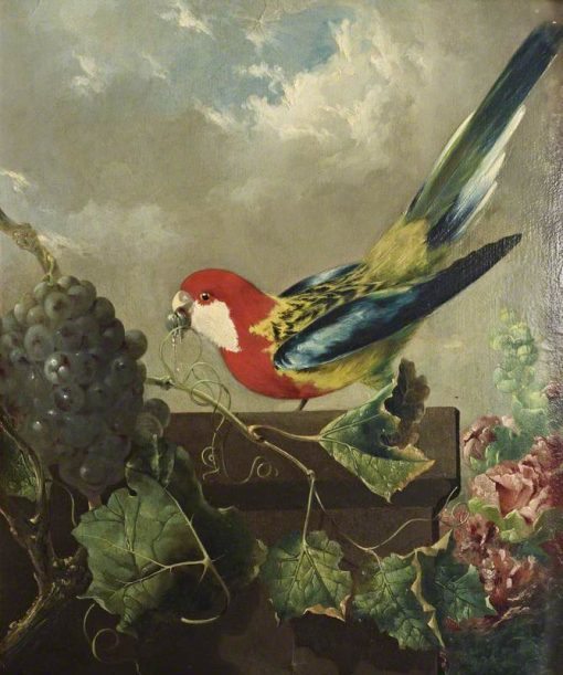 Parakeet with Grapes and Hollyhocks   Philip Reinagle   Oil Painting