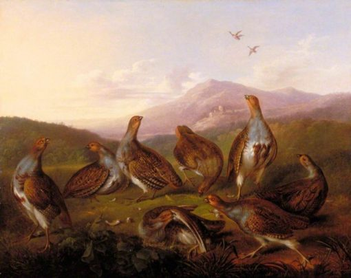 Partridges in a Moorland Landscape   Philip Reinagle   Oil Painting