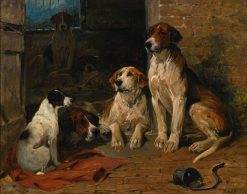Hounds by a Kennel | John Emms | Oil Painting
