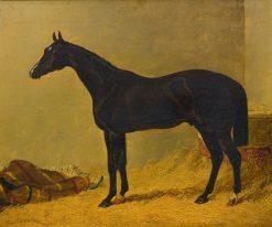 Launcelot | John Frederick Herring