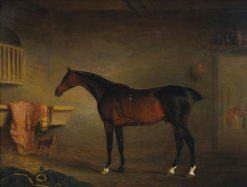 The Bay Easton in His Stable | John E. Ferneley