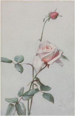 Pink Rose Bud | George Cochran Lambdin | Oil Painting