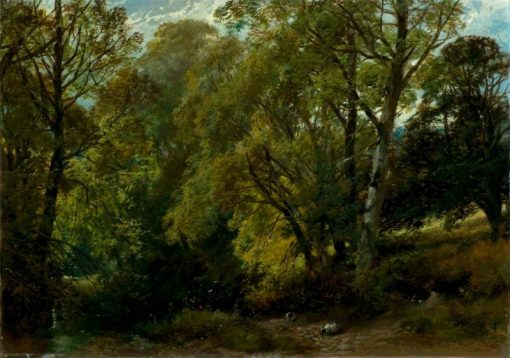 A Shady Nook | James Duffield Harding | Oil Painting