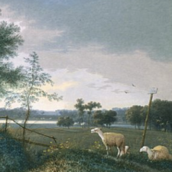 Knip, Joseph August