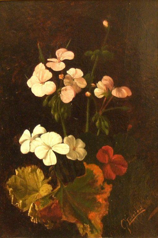 Flowers Posy | Giorgio Lucchesi | Oil Painting