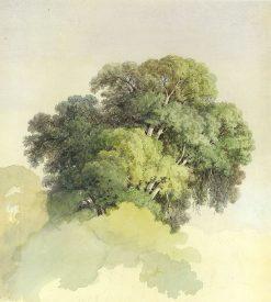 The crowns of the trees   Feodor Vasilyev   Oil Painting