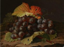 A cluster of blue grapes | Johan Laurentz | Oil Painting