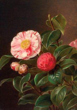 Camelias | Johan Laurentz | Oil Painting