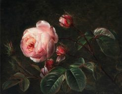 Branches of pink roses | Johan Laurentz | Oil Painting