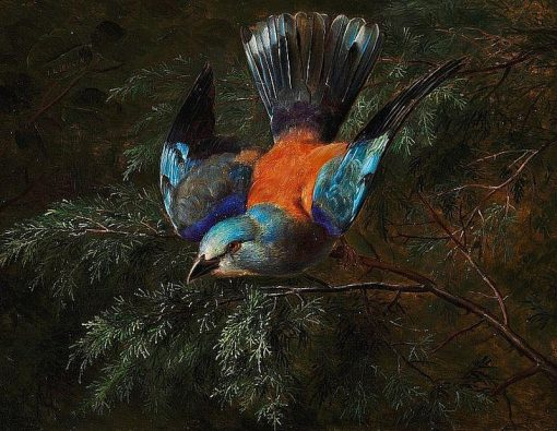 A jay in a spruce | Johan Laurentz | Oil Painting