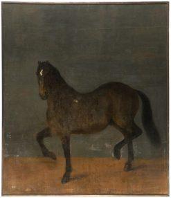 The Horse Called Brandklipparen | David Klocker Ehrenstrahl | Oil Painting