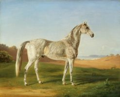 Spotted Arabian | Henri Delattre | Oil Painting