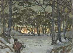 Winter Study from Djurgarden