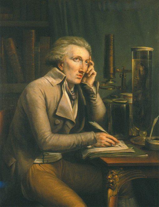 Portrait of Georges Cuvier | Mattheus Ignatius van Bree | Oil Painting