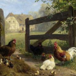 Voltz, Fredrich Johann