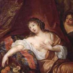 Collenius, Hermannus