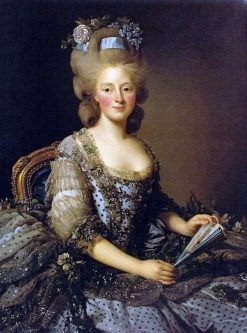 Portrait of Archduchess Maria Amalia of Austria | Alexander Roslin | Oil Painting