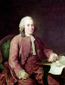 Portrait of Carl von Linnaeus | Alexander Roslin | Oil Painting