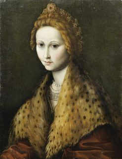 Portrait of a Young Woman with a Fur Collar | Il Bacchiacca | Oil Painting