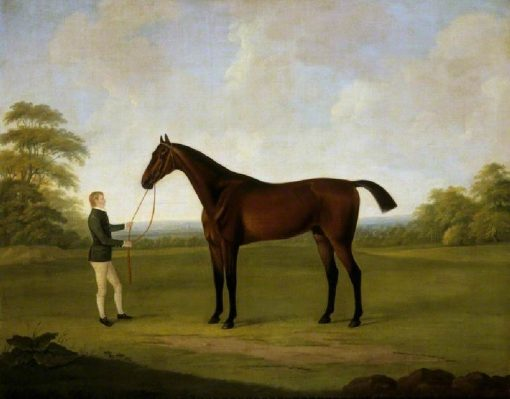 Saltram with a Stable Lad | John Nost Sartorius | Oil Painting