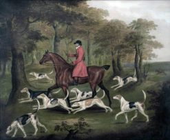 A Huntsman and Fox Hounds