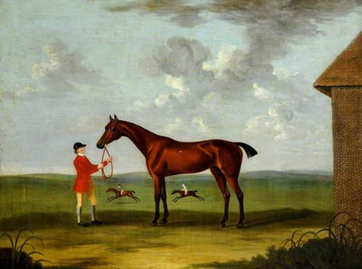 A Bay Horse Called Fleacatcher | John Nost Sartorius | Oil Painting