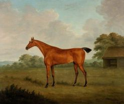 Chestnut Horse in a Landscape | John Nost Sartorius | Oil Painting