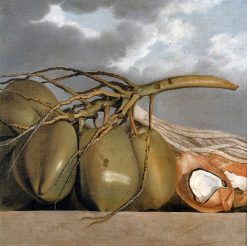 Coconuts | Albert Eckhout | Oil Painting