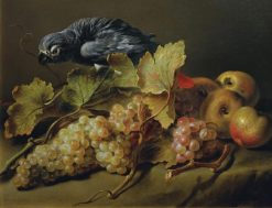 Still Life with a Parrot and Grapes | Erasmus Engert | Oil Painting