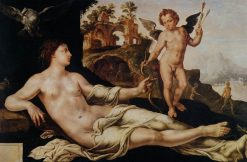 Venus and Cupid | Maerten van Heemskerck | Oil Painting