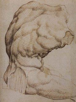 The Belvedere Torso | Maerten van Heemskerck | Oil Painting