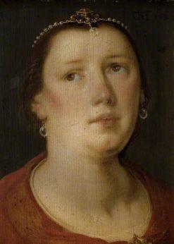 Female Head | Cornelis van Haarlem | Oil Painting