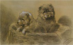 Two St. Bernard Puppies   Otto Eerelman   Oil Painting