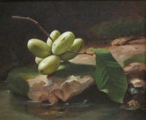 Still-life with Paw Paws | Edward Edmondson | Oil Painting
