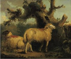 Two Sheep in a Landscape | George Morland | Oil Painting