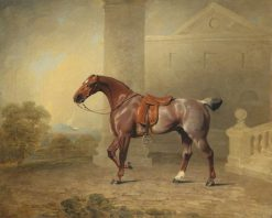 The Prince of Waless Favourite Roan Hack | Benjamin Marshall | Oil Painting
