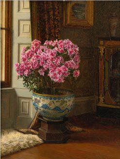 A Double Pink Azalea | Jessica Hayllar | Oil Painting