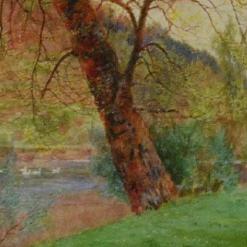 Sowerby, John George
