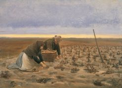 Potato Harvest | Michael Peter Ancher | Oil Painting