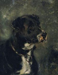 Head of a Dog   Anton Romako   Oil Painting