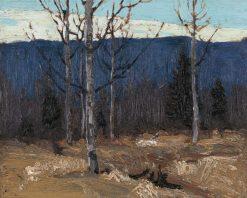 Hillside on Big Cauchon lake - Algonquin Park | Tom Thomson | Oil Painting