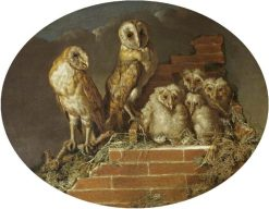 Barn Owls with Their Brood | William Tomkins | Oil Painting