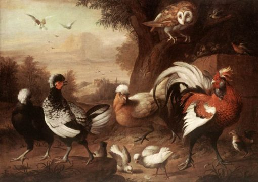 Fowls and Owl | Jakob Bogdány | Oil Painting