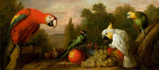 Composition with Parrots and Fruit | Jakob Bogdány | Oil Painting