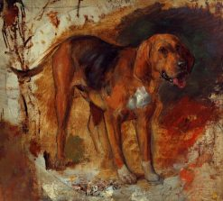 Study of a bloodhound | William Holman Hunt | Oil Painting
