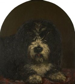 Head of a Dog | Patrick Allan-Fraser | Oil Painting