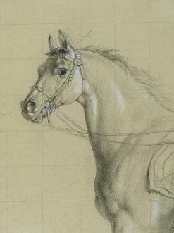 Study of a Horse | Johann Peter Krafft | Oil Painting