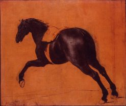 Black horse galloping | Adam Frans van der Meulen | Oil Painting