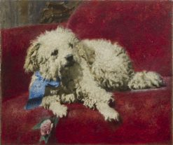 White Poodle | Daniele Ranzoni | Oil Painting