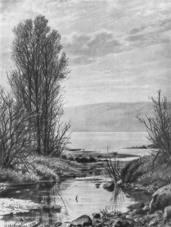 The Lake Shore | Ivan Ivanovich Shishkin | Oil Painting